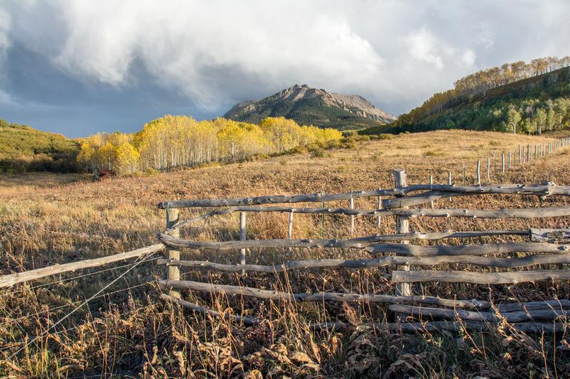 Last Dollar Road Fence